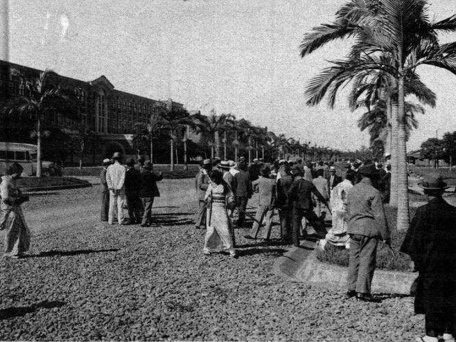 台北帝大時代の椰林大道